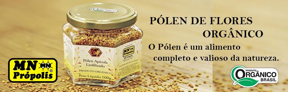 banner polen