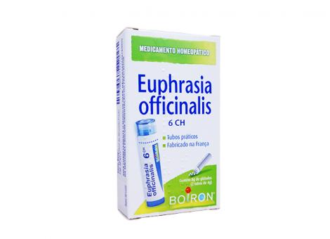 EUPHRASIA DESTAQUE